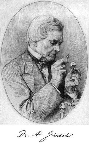 August Grisebach - Image: August Heinrich Rudolf Grisebach