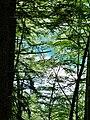 Ausblick zum Freibergsee - panoramio.jpg