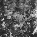 Auschwitz-Birkenau Extermination Complex - NARA - 306012.tif