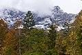 Autumn And Winter (180701243).jpeg