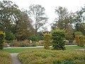 Autumn at RHS Wisley (3) - geograph.org.uk - 1561927.jpg