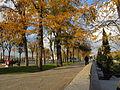 Autumn day in Madrid (6382205663).jpg