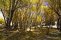 Autumn in Gilgit Baltistan - Pakista.jpg