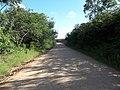 Avenida Vista Alegre - Palma - Santa Maria, foto 05 (sentido N-S).jpg - panoramio.jpg