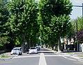 Avenue du Grand Port - Aix-les-Bains (D991).jpg