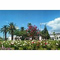 BEAUTIFUL GARDEN IN TETOUAN.jpg