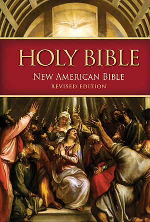 New American Bible Revised Edition - Image: BIG NABRE