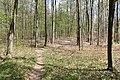 Babice-nad-Svitavou-rezervace-Čihadlo-na-svém-jihozápadním-okraji-při-silnici2020a.jpg