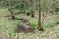 Bad Wünnenberg - 2019-04-25 - PB-060 Leiberger Wald (14).jpg