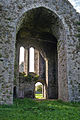 Ballybeg Priory St. Thomas Belfry Tower as seen from the Nave 2012 09 08.jpg