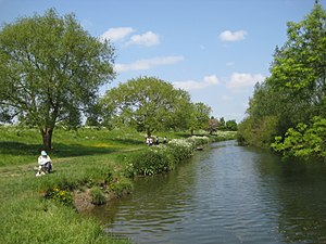 Grantchester - Image: Banks of the Cam at Grantchester