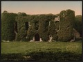 Banqueting Hill, Beaumaris Castle, Wales-LCCN2001703426.tif