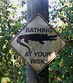 Bathing at your risk.jpg