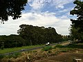 Bauru - SP - panoramio (108).jpg