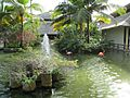 Bavaro — Iberostar — Main lake with flamingos.JPG