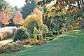 Bedrock Garden's Funnel.jpg