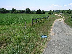 Benedict, Maryland - Landscape in Benedict