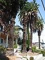 Benicia, CA USA - panoramio (6).jpg