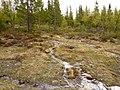Berg S, Sweden - panoramio - Åke Svensson (17).jpg