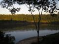 Bertoni rio parana.png