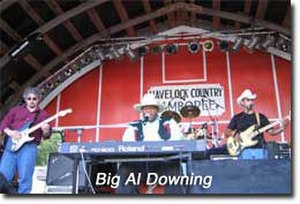 Al Downing (musician) - Big Al performing in concert in 2004