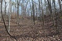 Big Hill Pond Fortification 1.jpg