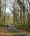 Binfields Woodland Park - geograph.org.uk - 761535.jpg