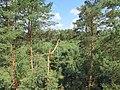 Birštono sen., Lithuania - panoramio (101).jpg