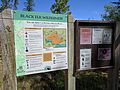 Black Elk Peak hike 01.jpg