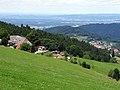 Blick über den Eckhof und Horben auf Freiburg.jpg