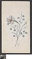 Bloem, circa 1786 - circa 1862, Groeningemuseum, 0041775000.jpg