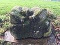 Bodenham Bullocks 02.jpg