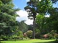Bodnant Garden Frühsommerimpression 4.JPG