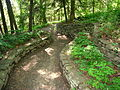 Botanical Gardens at Asheville - path.JPG