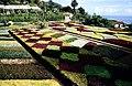 Botanischer Garten von Madeira 02.jpg