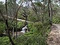 Braeside Trail - panoramio (5).jpg