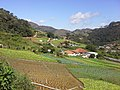 Brasil rural - panoramio (24).jpg