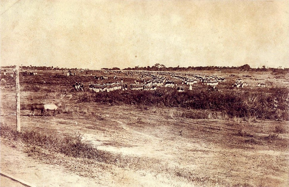 Brazilian army in Paraguay