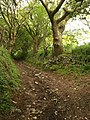 Bridleway near Cox Hill - geograph.org.uk - 1314287.jpg