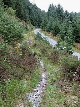 Bridleway near Llyn Brianne, Powys - geograph.org.uk - 1501142