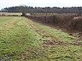 Bridleway near Slepe - geograph.org.uk - 1692288.jpg