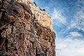 Bright Angel Trail, South Rim, Grand Canyon (33252499906).jpg
