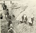 British war dogs, their training and psychology ((1920)) (20418852625).jpg