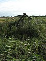Broken field gate on the other side of drain - geograph.org.uk - 589292.jpg