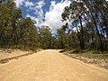Brooman NSW 2538, Australia - panoramio (140).jpg