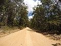 Brooman NSW 2538, Australia - panoramio (144).jpg