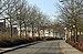 Brugge Wulpenstraat R01.jpg