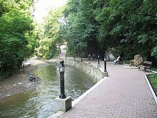 Rasina (river)