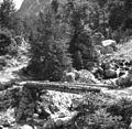 Brv čez potok Baladovec v Sp. Trenti 1952.jpg