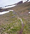Bucegi - trail 2.jpg